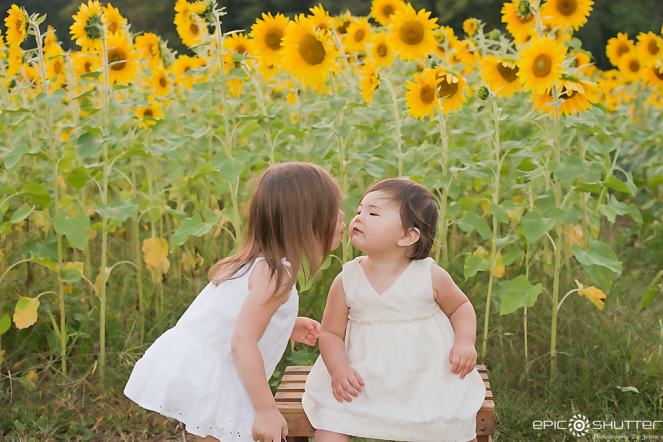 Family Photos, Sweet Sisters, Sunflower Field, Outer Banks, OBX, North Carolina, Epic Shutter Photography, Family Portraits, Sunflower Field, Hatteras Island Photographers, OBX Photographers, Family Photographer, Family Vacation