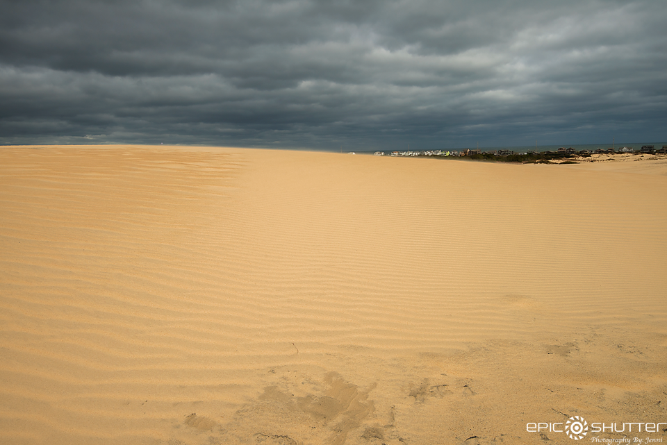 Epic Shutter Photography, Natural Art, Outer Banks Photographers, Documentary Photographers, Jockey's Ridge State Park, Nags Head, North Carolina, OBX Family Fun