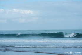 Brett Barley, Dallas Tolson, Surfing, Buxton, Cape Hatteras National Seashore, Surfers,Hatteras Island Wildlife Rescue, Razorbill Bird, Epic Shutter Photography, Outer Banks Photographers, Hatteras Island Photographers, Documentary Photographers