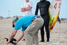 Dallas Tolson, Lou Browning, Surfing, Buxton, Cape Hatteras National Seashore, Surfers,Hatteras Island Wildlife Rescue, Razorbill Bird, Epic Shutter Photography, Outer Banks Photographers, Hatteras Island Photographers, Documentary Photographers