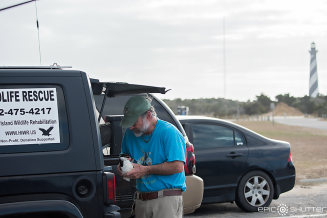 Lou Browning, Surfing, Buxton, Cape Hatteras National Seashore, Surfers,Hatteras Island Wildlife Rescue, Razorbill Bird, Epic Shutter Photography, Outer Banks Photographers, Hatteras Island Photographers, Documentary Photographers