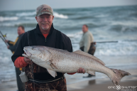 Leigh Wells,Fisherman, Red Drum, Fishing, Cape Point, Buxton, North Carolina, Outer Banks Photographers, Hatteras Island Photographers, Fish, Documentary Photographers, Epic Shutter Photography