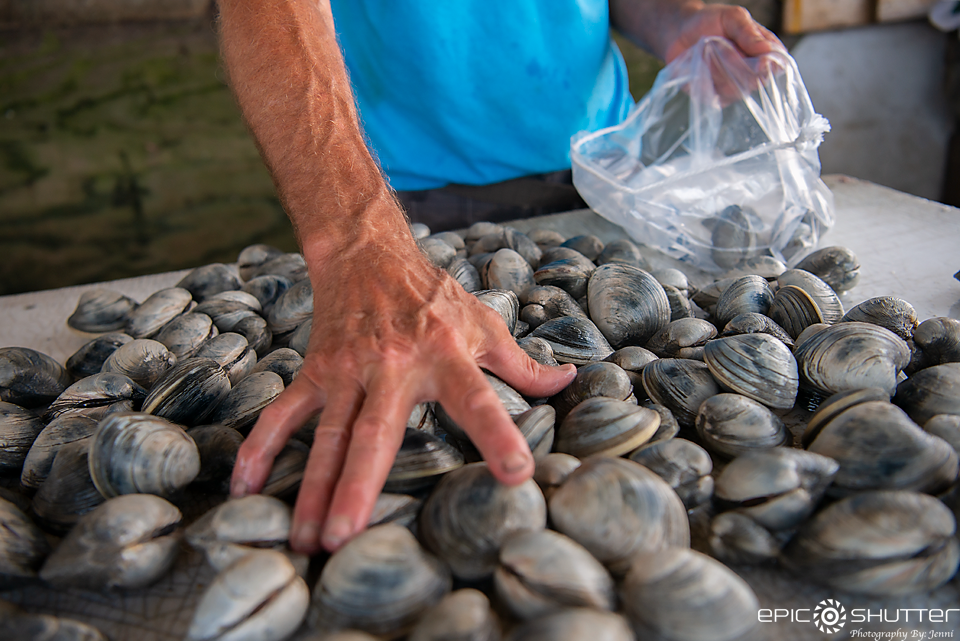 Jim Lyons, Clamming,Hatteras Island Legend, Fish House, Hatteras Harbor Marina, Epic Shutter Photography, Outer Banks Documentary Photographer, Hatteras Island Photographer