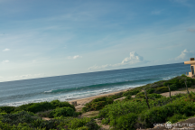 Surf Trip, Epic Shutter Photography, San José del Cabo, Baja California Sur, Mexico, Travel Photographer, Aquatech Imaging Solutions, Baja, Documentary Photography, Epic Events, Fresh Seafood, Point Break, Mexico, Shipwrecks, Sunrise, Sunset, Surf Photography, Surfin