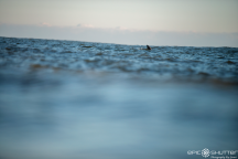Dolphins, Jetty, Swell, CHSS Surf Club, Winter, Surfing, Outer Banks, Buxton, North Carolina, Epic Shutter Photography, After School Sessions, Students, Surf, Waves, Outer Banks Surf Photographer